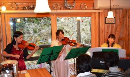 ヴァイオリン演奏の写真